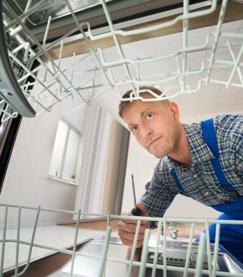 Как помыть и очистить посудомоечную машину внутри
