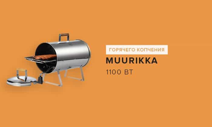 1100 Вт Muurikka