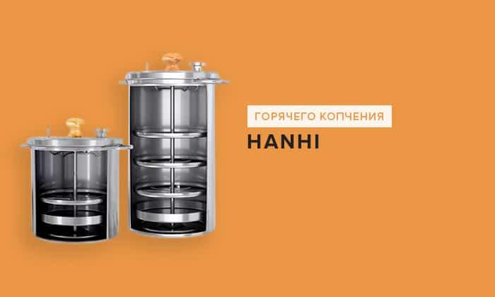 Hanhi