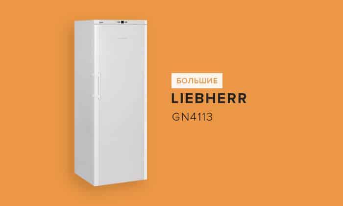 Liebherr GN4113