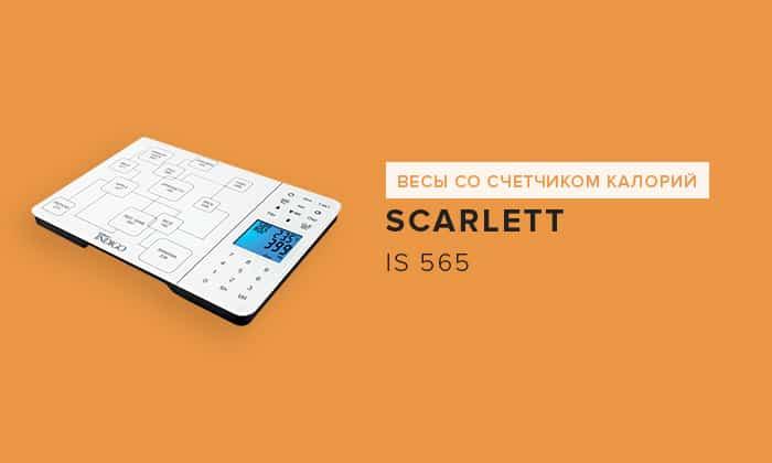 Scarlett IS 565