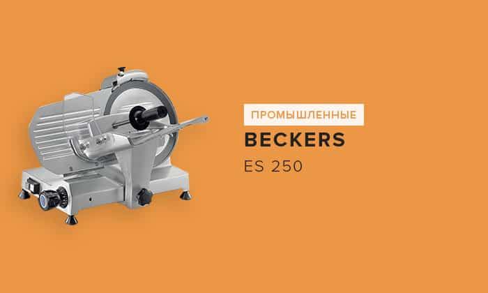 Beckers ES 250