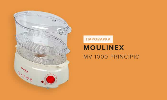 Moulinex MV 1000 Principio