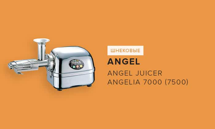 Angel Juicer Angelia 7000 (7500)