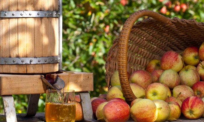 Соковыжималка для яблок своими руками
