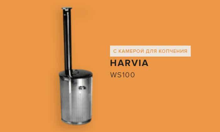 Harvia WS100