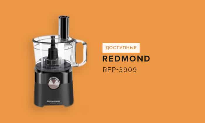 Redmond RFP-3909