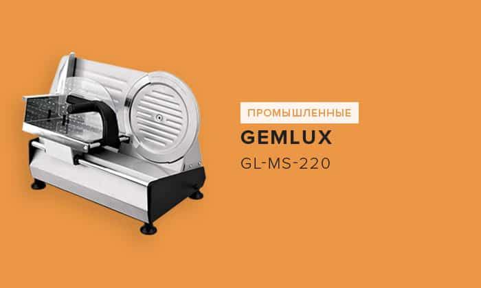 Gemlux GL-MS-220
