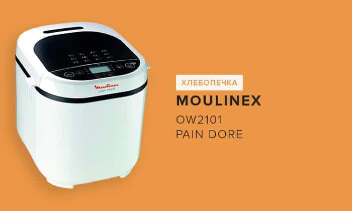 OW2101 Pain Dore