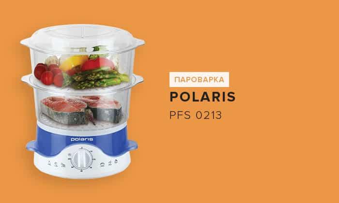 Polaris PFS 0213
